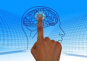 Helps brain activity