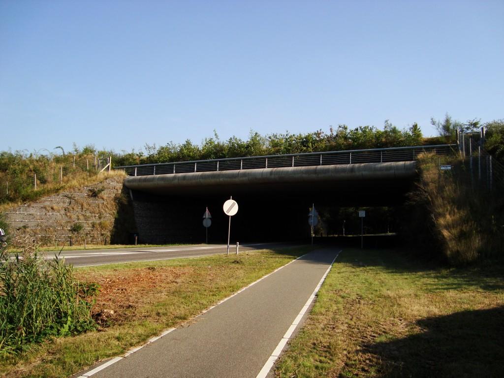 Wildlife Bridge, Netherlands