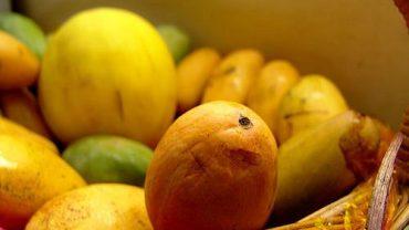 Magic weight-loss fruit