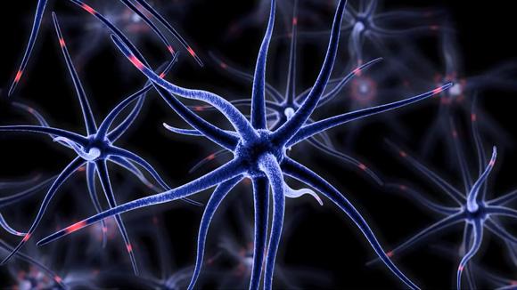 injectable-brain-mesh