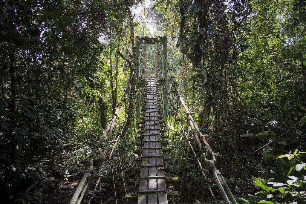bridge malaysia