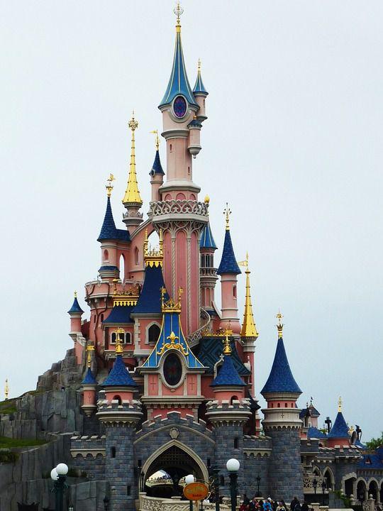 Cats and Disneyland
